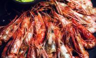 grilled avocado shrimps